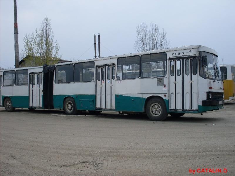 Ikarus 260 | 280 Sdc10329