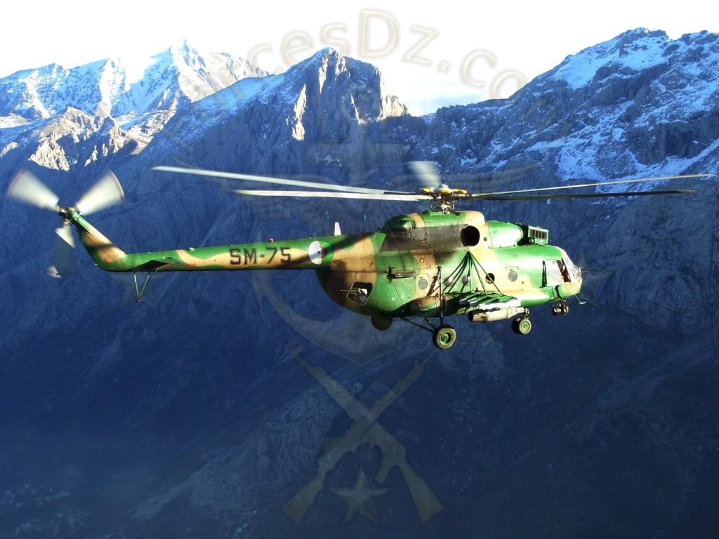 القوات الجوية الجزائرية بالصور و الأرقام Mi17b10