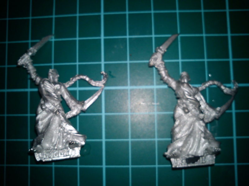 Delectable Tea's Sisters of Sigmar WIP Dsc00113