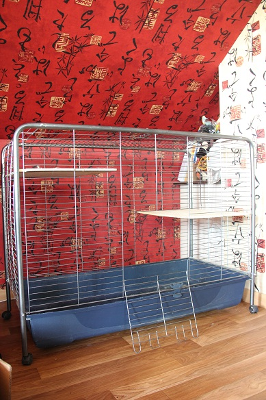 Cage a vendre ! Toulouse (31000) Img_8514