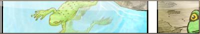 Naruto : Mura No Genten Graph10