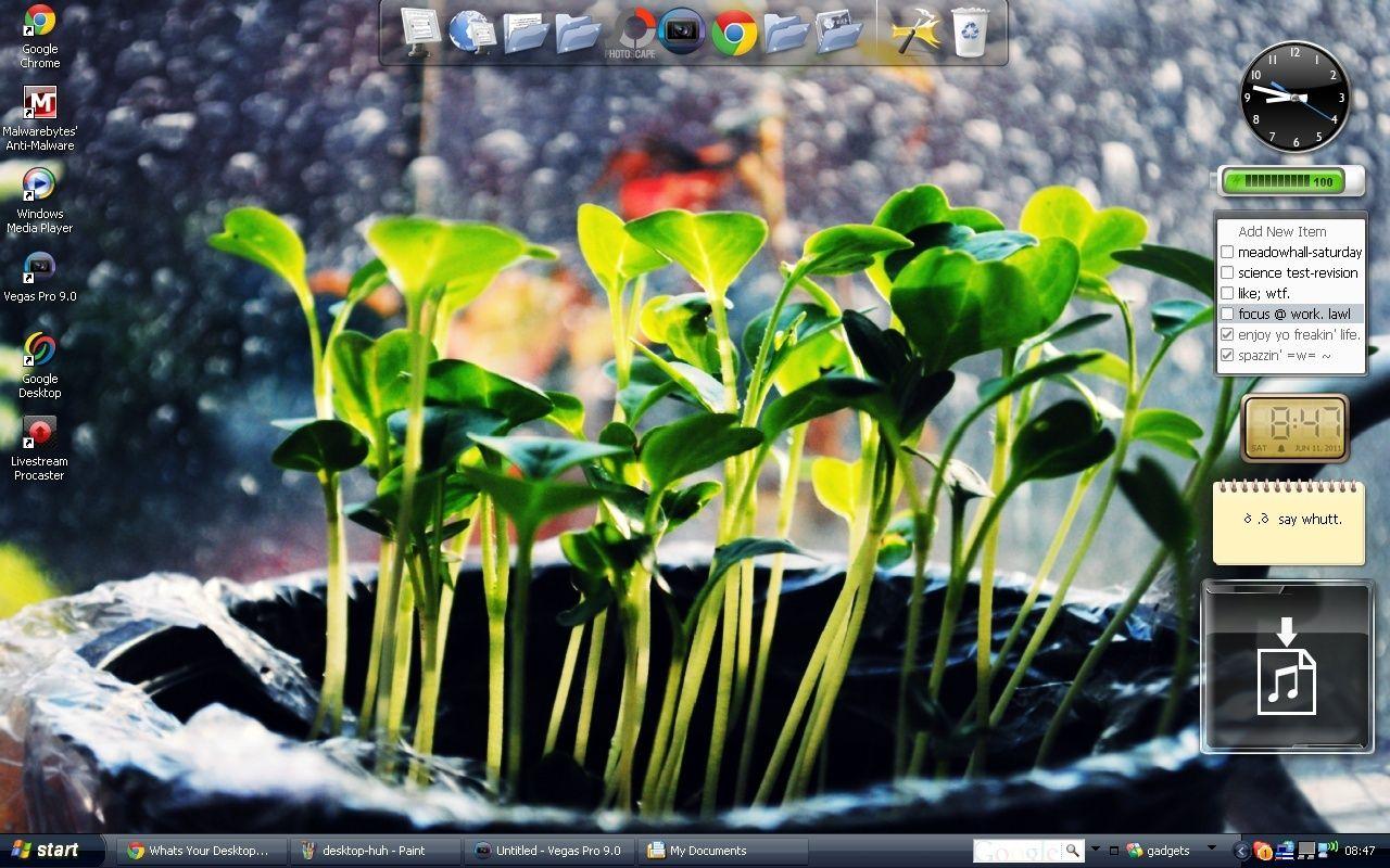 Whats Your Desktop? Deskto12
