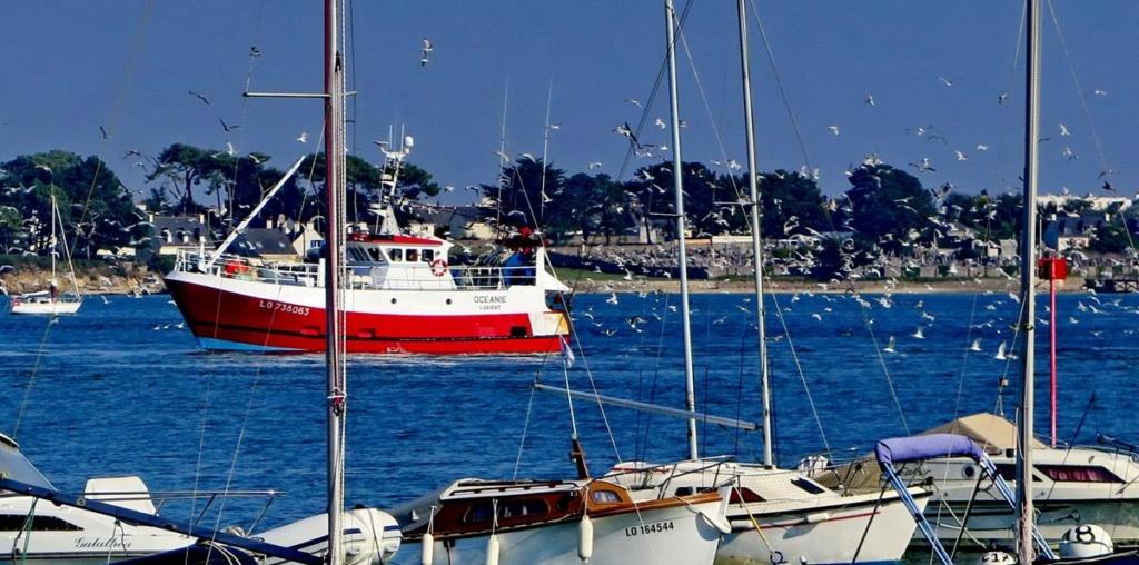 [VIE DES PORTS] Quelques bateaux de pêche (sur nos côtes Françaises) _copie27