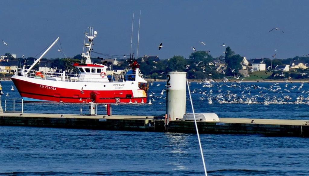 [VIE DES PORTS] Quelques bateaux de pêche (sur nos côtes Françaises) _copie29