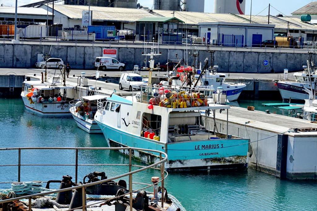 [Vie des ports] Les ports de la Réunion - Page 13 Dos_d102