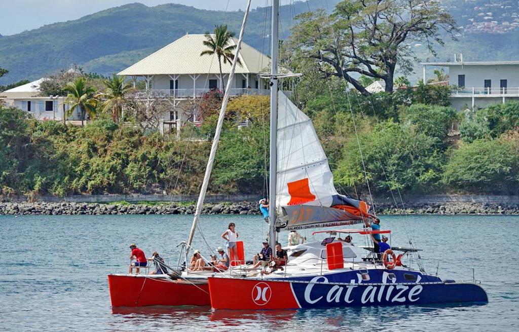 [Vie des ports] Les ports de la Réunion - Page 14 Dos_d209