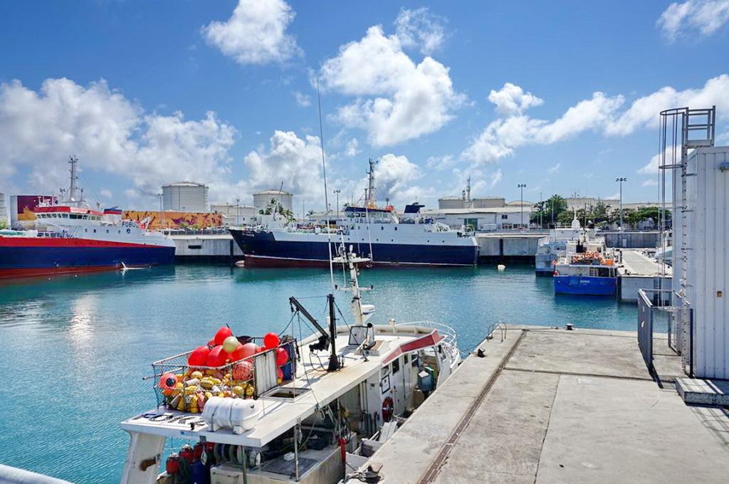 [Vie des ports] Les ports de la Réunion - Page 13 Dos_d_32