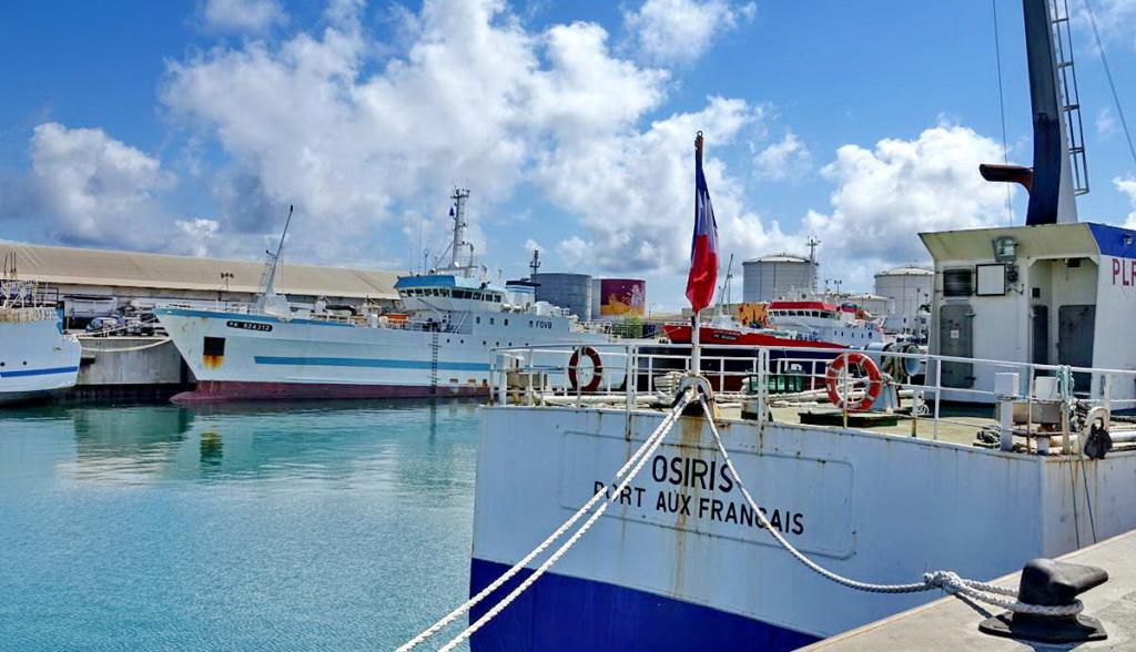 [Vie des ports] Les ports de la Réunion - Page 13 Dos_d_50