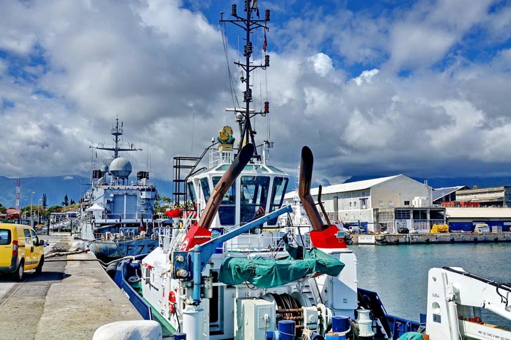 [Vie des ports] Les ports de la Réunion - Page 13 Dos_d_88