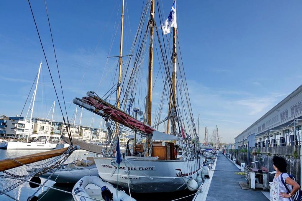 [Vie des Ports ] Port de La Rochelle  Ile_d103