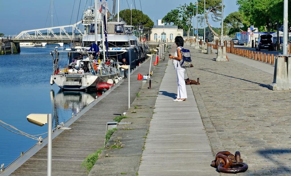 [Vie des Ports ] Port de La Rochelle  Ile_d157