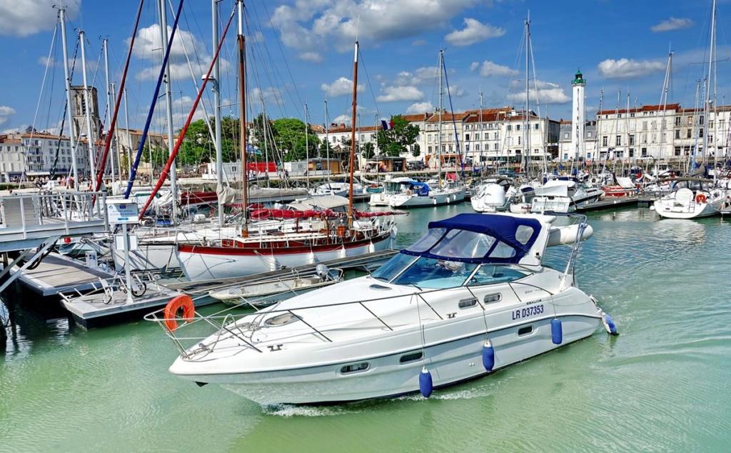 [Vie des Ports ] Port de La Rochelle  - Page 2 Ile_d350
