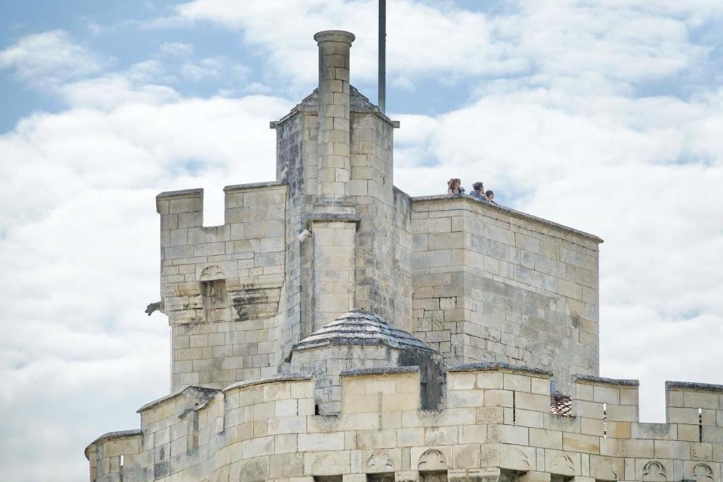 [Vie des Ports ] Port de La Rochelle  - Page 2 Ile_d413