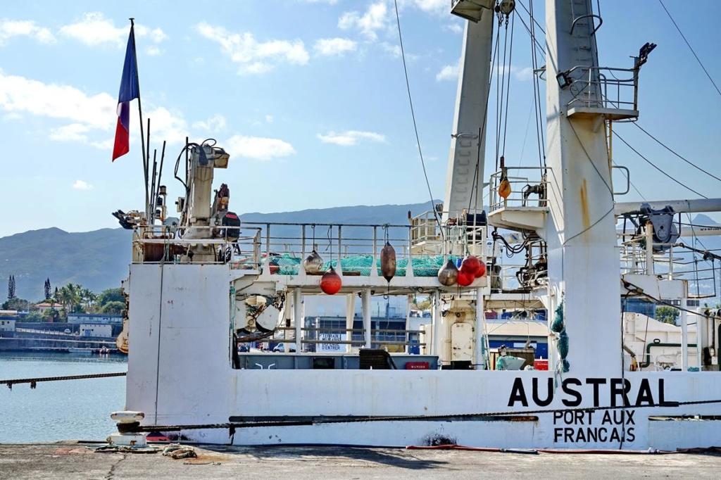 [Vie des ports] Les ports de la Réunion - Page 14 Port_140