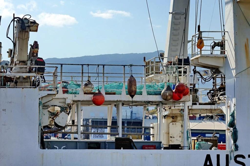 [Vie des ports] Les ports de la Réunion - Page 14 Port_142