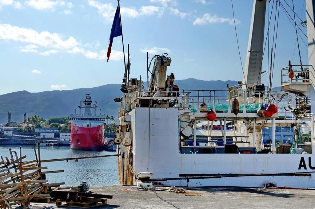 [Vie des ports] Les ports de la Réunion - Page 14 Port_144