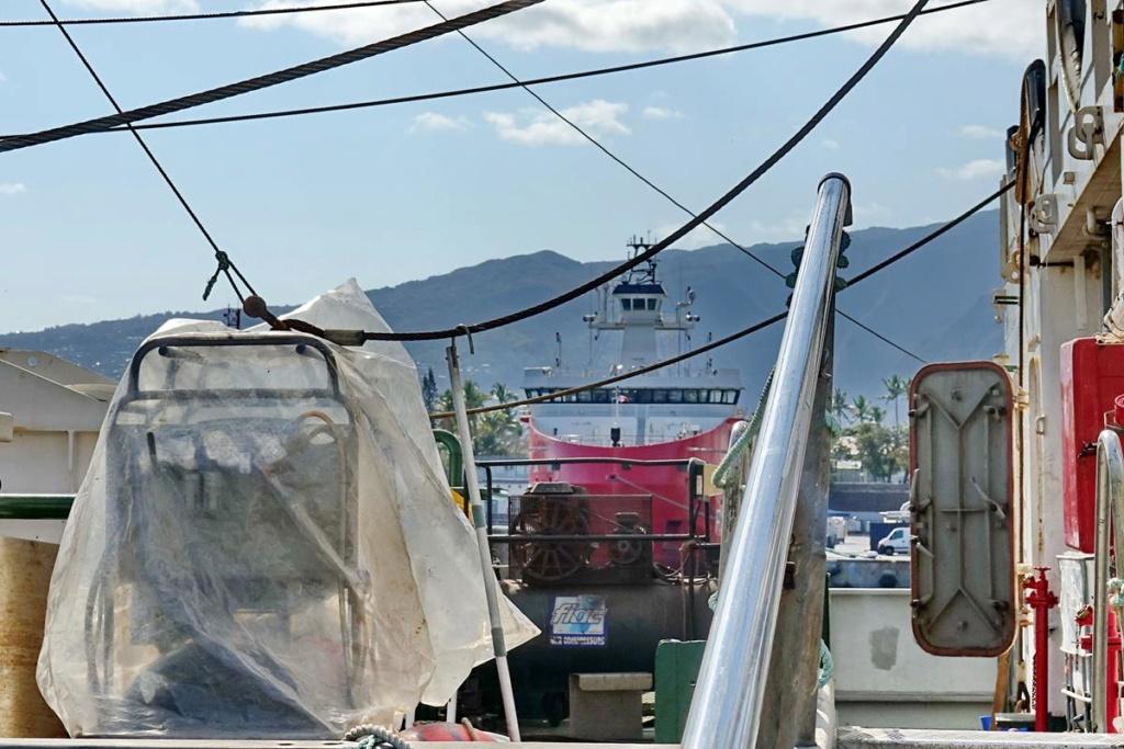 [Vie des ports] Les ports de la Réunion - Page 14 Port_226
