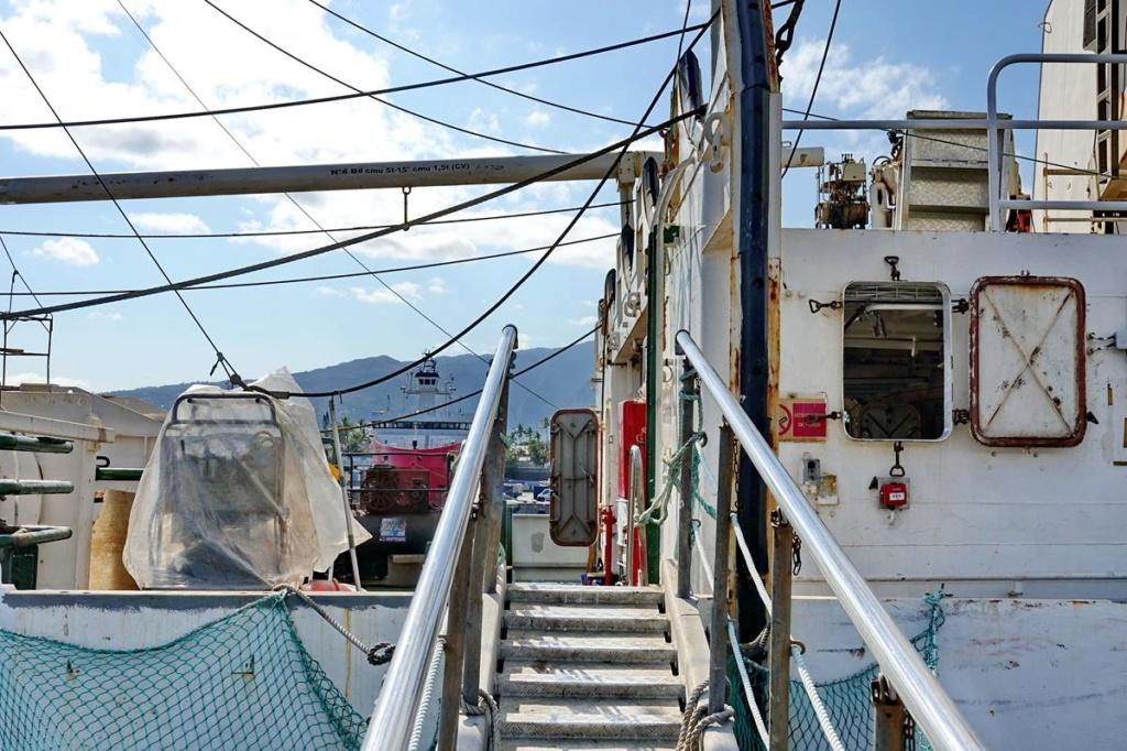 [Vie des ports] Les ports de la Réunion - Page 14 Port_227