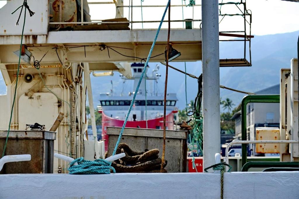 [Vie des ports] Les ports de la Réunion - Page 14 Port_228