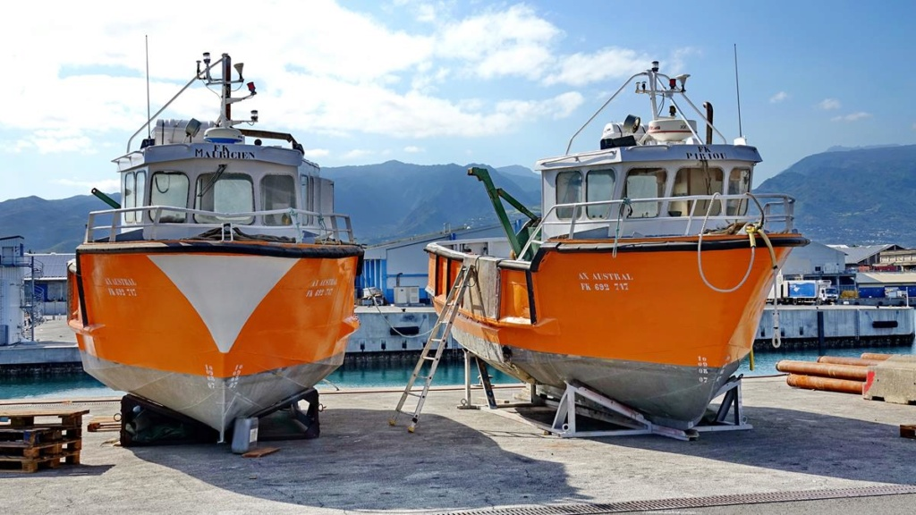 [Vie des ports] Les ports de la Réunion - Page 14 Port_251