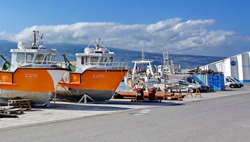 [Vie des ports] Les ports de la Réunion - Page 14 Port_252