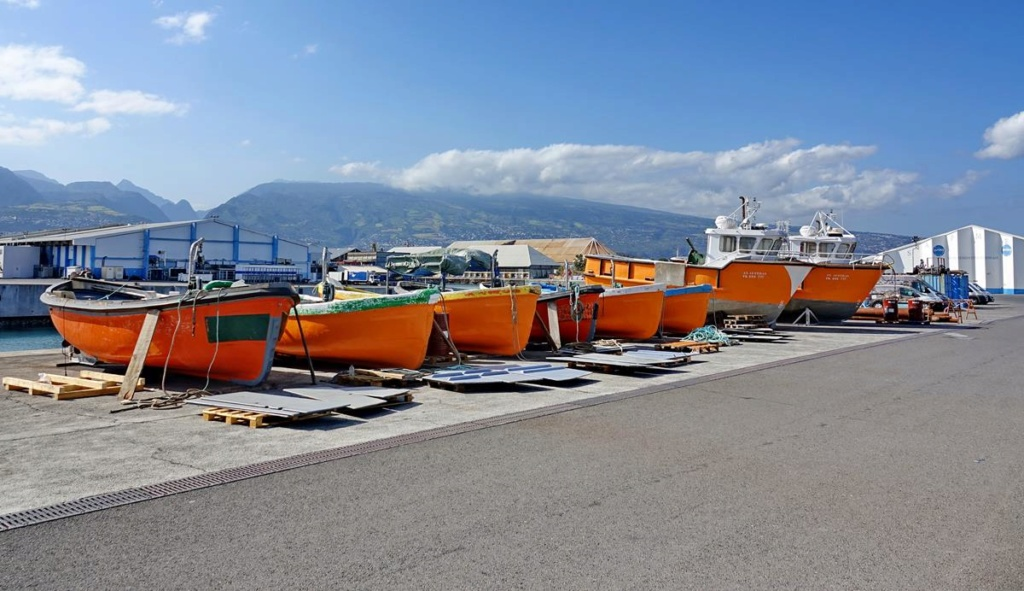 [Vie des ports] Les ports de la Réunion - Page 14 Port_253