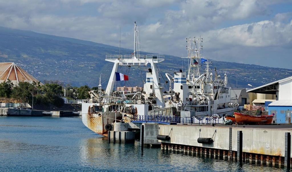 [Vie des ports] Les ports de la Réunion - Page 14 Port_258