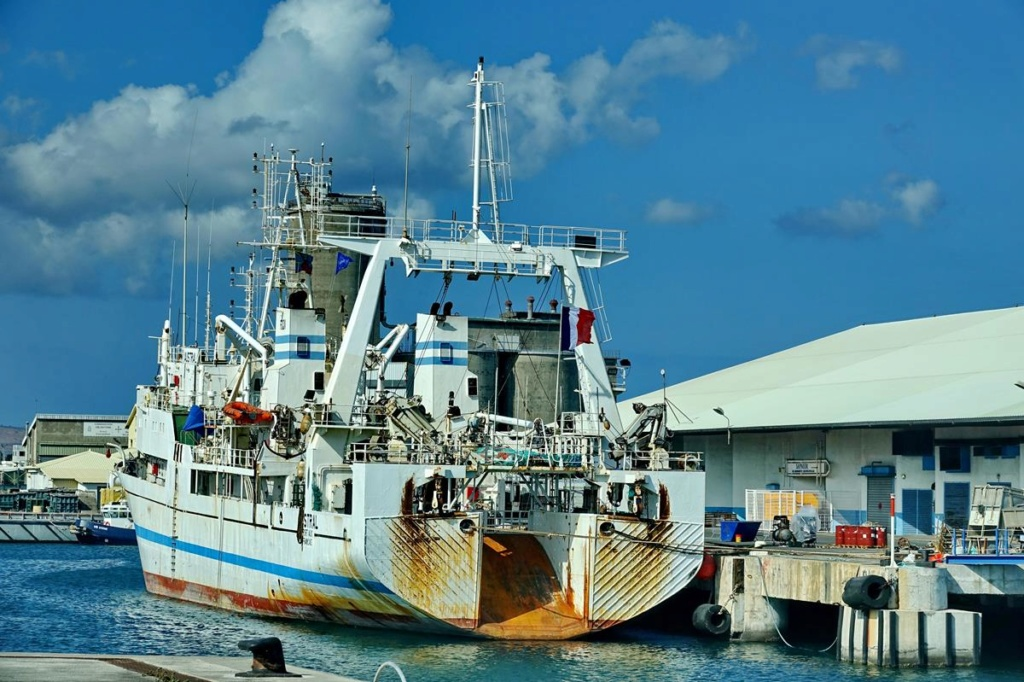 [Vie des ports] Les ports de la Réunion - Page 14 Port_267