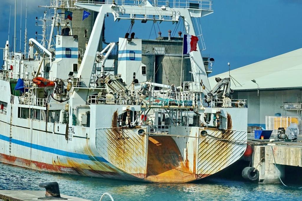 [Vie des ports] Les ports de la Réunion - Page 14 Port_268