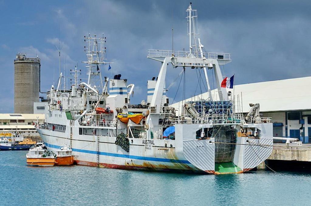 [Vie des ports] Les ports de la Réunion - Page 14 Port_287