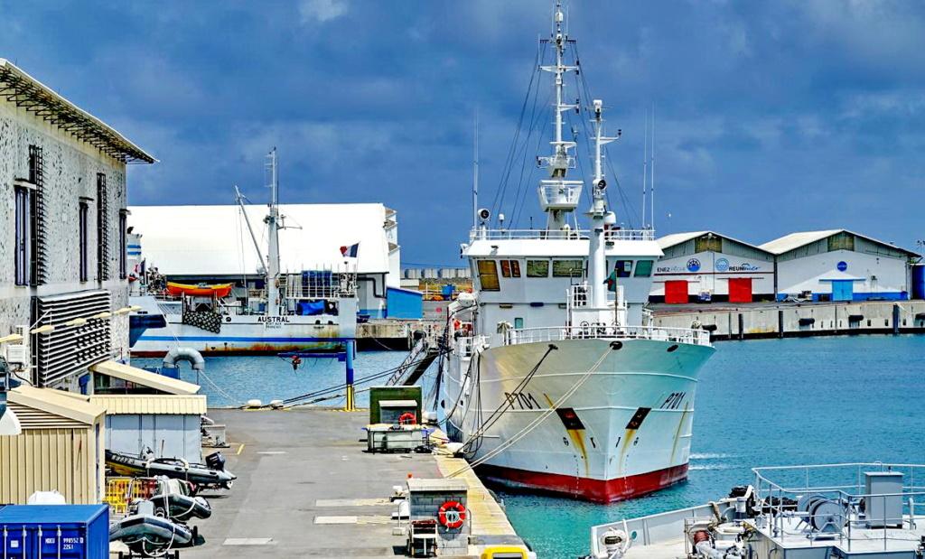 [Vie des ports] Les ports de la Réunion - Page 14 Port_288