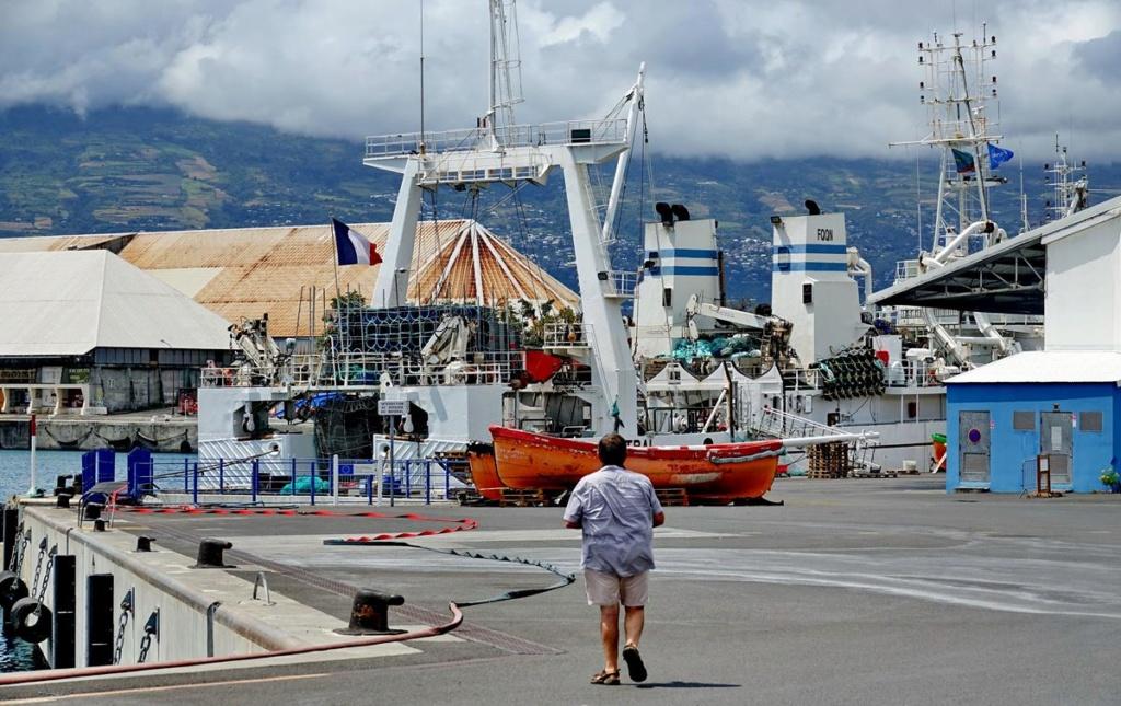 [Vie des ports] Les ports de la Réunion - Page 14 Port_d84