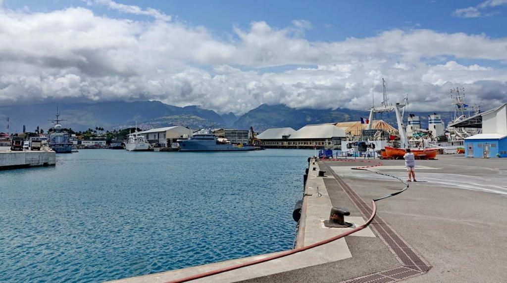 [Vie des ports] Les ports de la Réunion - Page 14 Port_d85