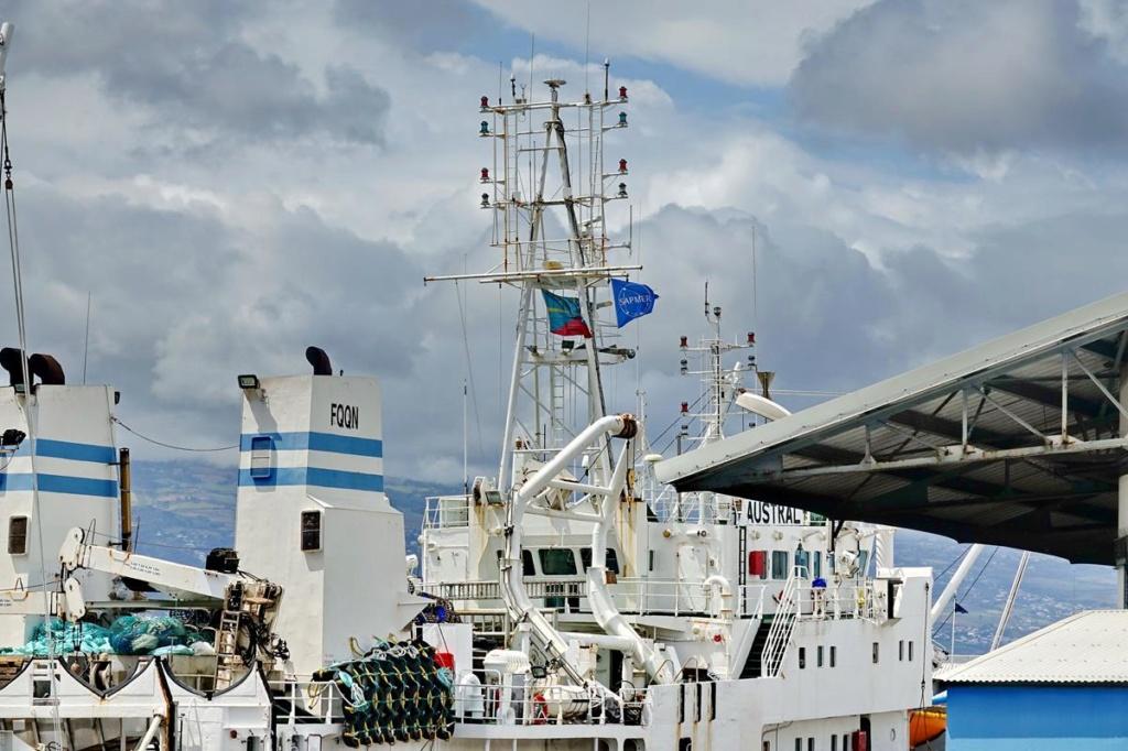 [Vie des ports] Les ports de la Réunion - Page 14 Port_d86