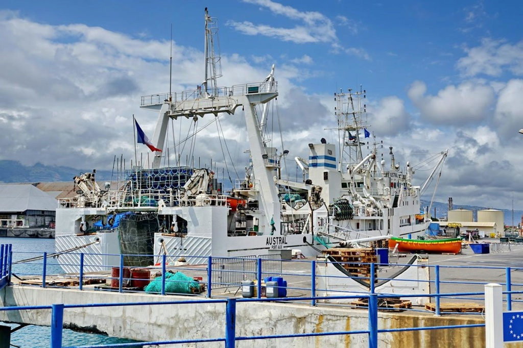 [Vie des ports] Les ports de la Réunion - Page 14 Port_d90