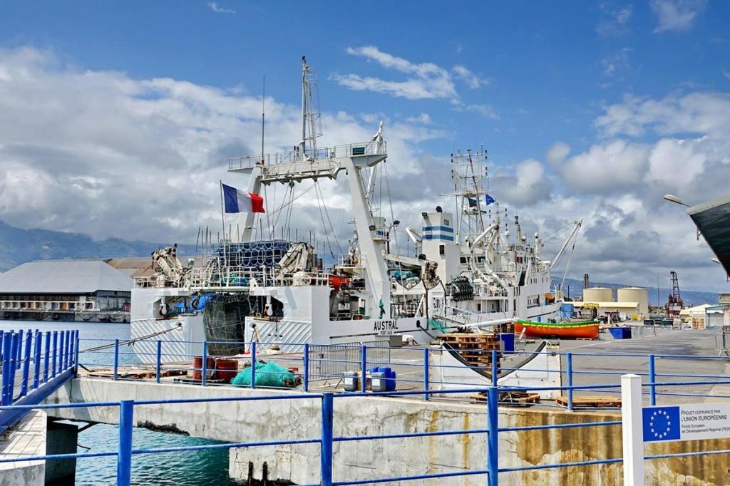 [Vie des ports] Les ports de la Réunion - Page 14 Port_d91