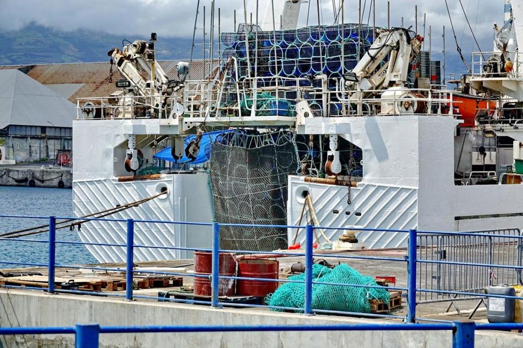 [Vie des ports] Les ports de la Réunion - Page 14 Port_d93