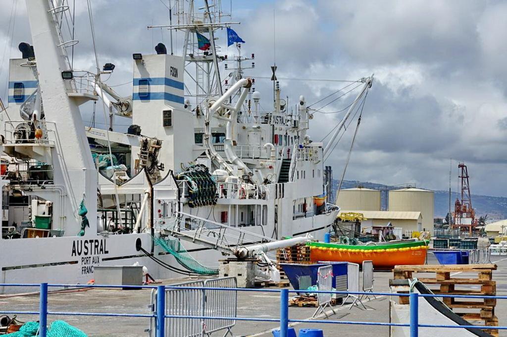 [Vie des ports] Les ports de la Réunion - Page 14 Port_d94
