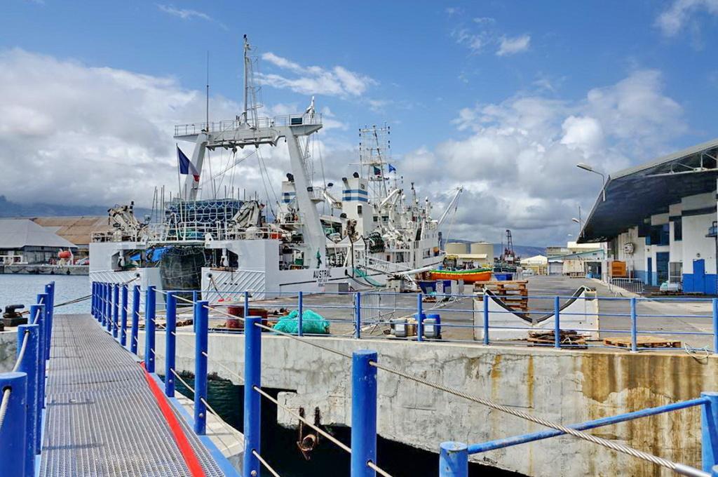 [Vie des ports] Les ports de la Réunion - Page 14 Port_d95