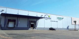 مصنع التعبئة والتغليف و تصدير منتوجات الفلاحية بالعرائش توظيف 1500 عامل و عاملة  Aa_oao10