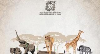 شركة حديقة الحيوانات الوطنية : مباراة توظيف 05 مناصب للحاصلين على دبلوم تقني و تقني متخصص و التاهيل المهني و الاجازة و الدراسات قبل 16 يوليوز 2019 Ao_yco10