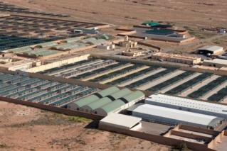 محمية طيور الحبارى الاماراتية : توظيف 25 منصب عمال اعوان بجهة افران Ayaoo_10