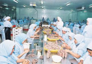 وحدة صناعية لتنقية القمرون بمدينة جرادة توظيف 300 عاملة و عامل و 08 عاملات و عمال متعدد الخدمات و 02 تقنيين و اطار Dzocor10