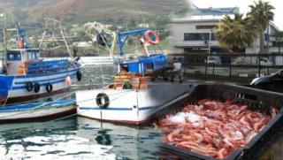 قطاع الصيد البحري : مباراة لتوظيف 29 متصرف من الدرجة الثانية و الثالثة و 13 مهندس دولة قبل 21 شتنبر 2018 Dzopar10