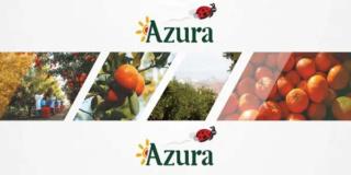 مجموعة الفلاحية المغربية الفرنسية ازورا Groupe Azura توظيف تقنيين و اطر و مسؤولين و عمال بدون دبلوم Groupe17