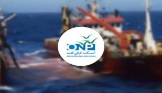 المكتب الوطني للصيد : مباراة لتوظيف 12 منصب في عدة درجات وظيفية اخر اجل 05 غشت 2019 Onp-co10