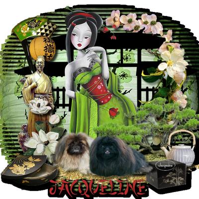 Au sujet des cacib Japona10