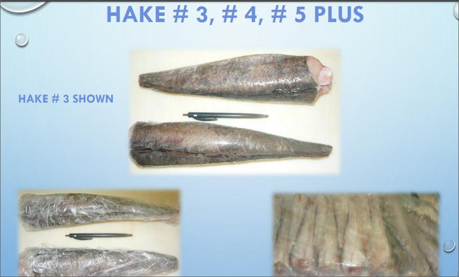 Fish for buyer    F001  000710