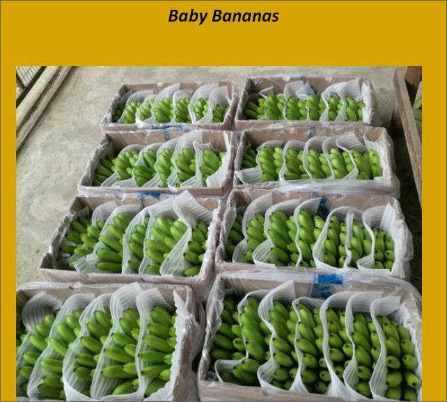 Offer  BANANA BOXES  47555212