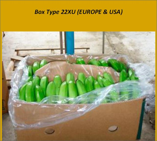 Offer  BANANA BOXES  47584510